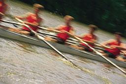 Rowing Injuries